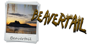 Beavertail