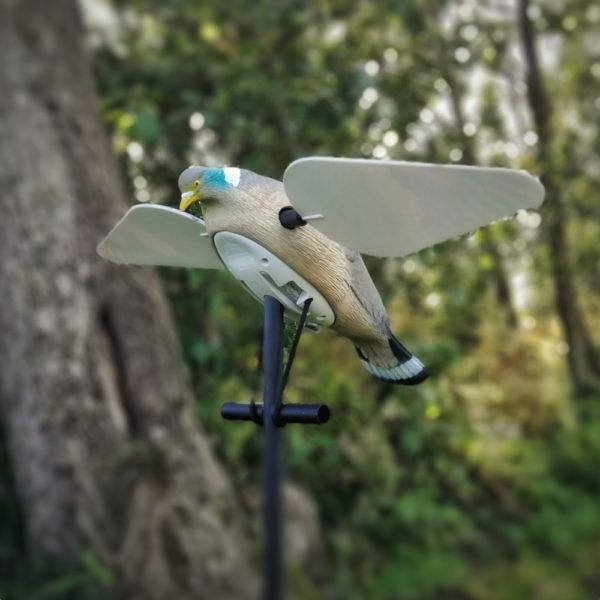 pigeonspinner001