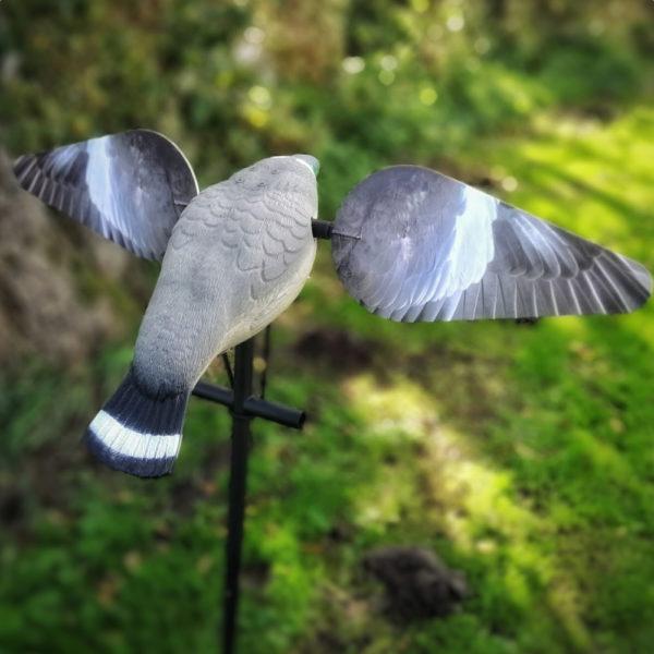 pigeonspinner002